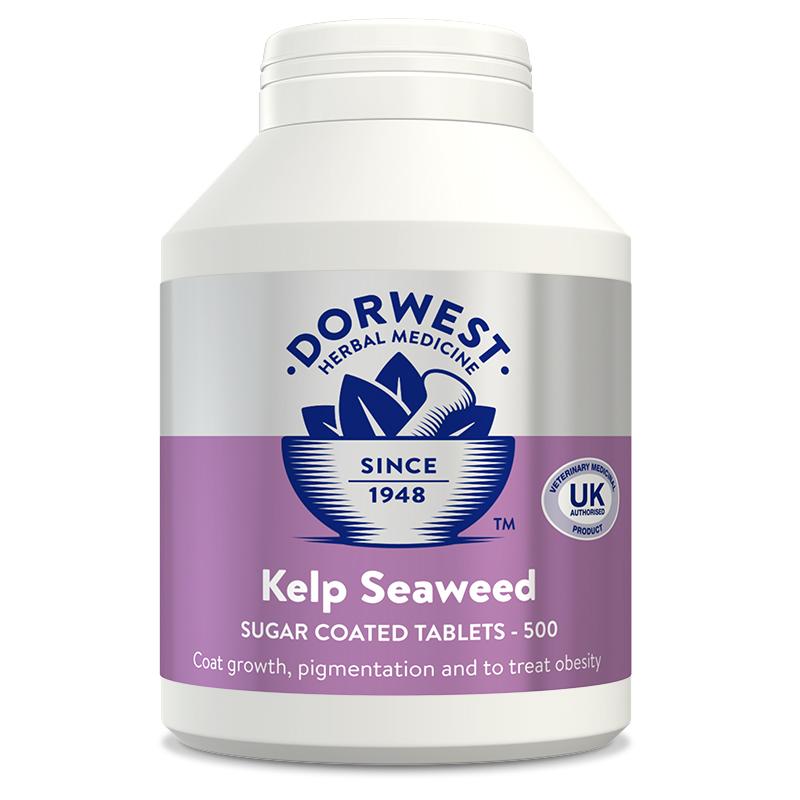 Dorwest Herbs Kelp Seaweed 500 tablets Dog Cat supplement ...