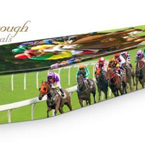 Horse Racing Coffin