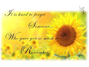 Never Forgotton