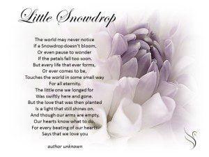 Little Snowdrop