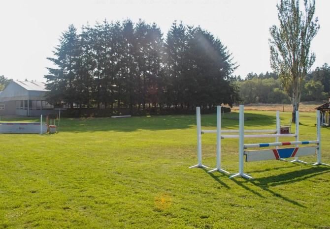 horse jumping gates at swan training
