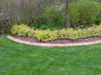 Swapsity: Items : Concrete Garden Edging