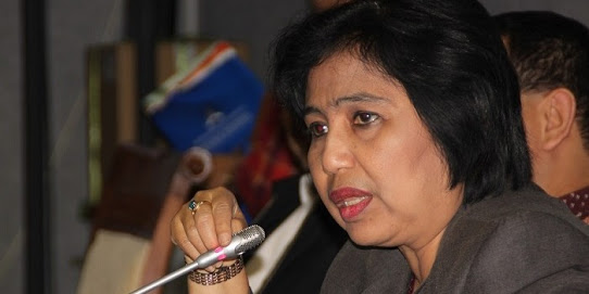 Anggota Komisi IX DPR RI Irma Suryani