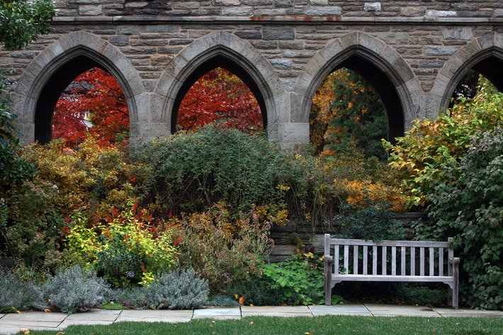 Undocumented Students  Admissions  Aid  Swarthmore College