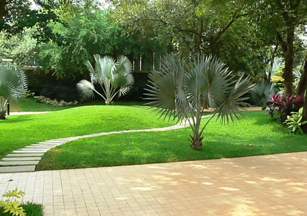landscape architecture projects