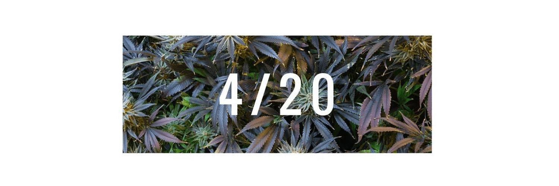 4/20 – Cannabis Day