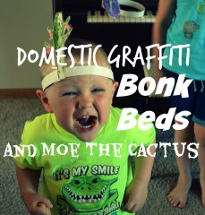 SQT {10}: Domestic Graffiti, Bonk Beds, and Moe the Cactus
