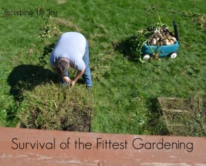 Happiness {8}:  Survival of the Fittest Gardening