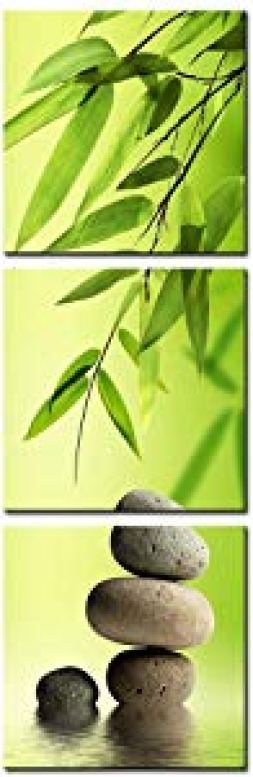 DVQ ART Framed Canvas Print Painting Bamboo and Stone… Giveaway