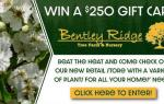 Bentley Ridge Tree Farm & Nursery Sweepstakes