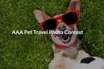 AAA Pet Travel Photo Contest - Win Gift Card