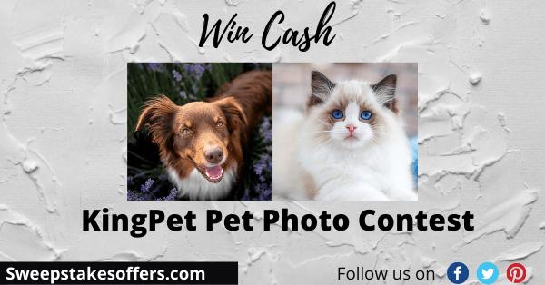 KingPet Pet Photo Contest