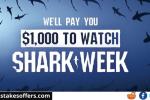 Shark Week Cash Sweepstakes