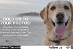 Orvis Cover Dog Photo Contest