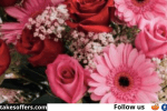 Rosa Regale Win a Year of Roses Sweepstakes