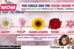 Word of the Day Sweepstakes