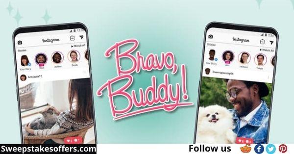 Bravecto Bravo Buddy Sweepstakes
