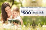 Molly Maid Mother's Day Giveaway