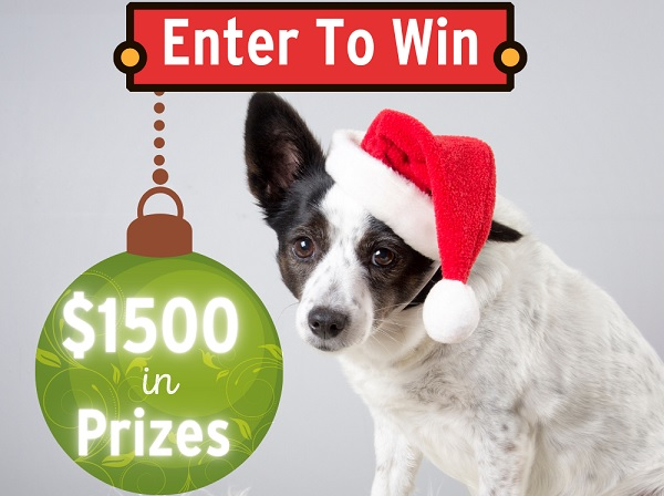 Free Pet Stuff Giveaway