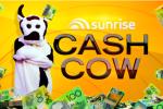 Channel Seven Sunrise Cash Cow Competition