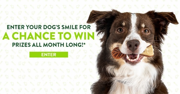 Healthier by the Smile Sweepstakes