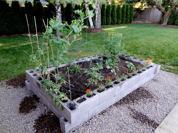 Elegant ... Cinder Block Raised Garden Bed