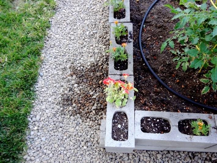 gardenbed4