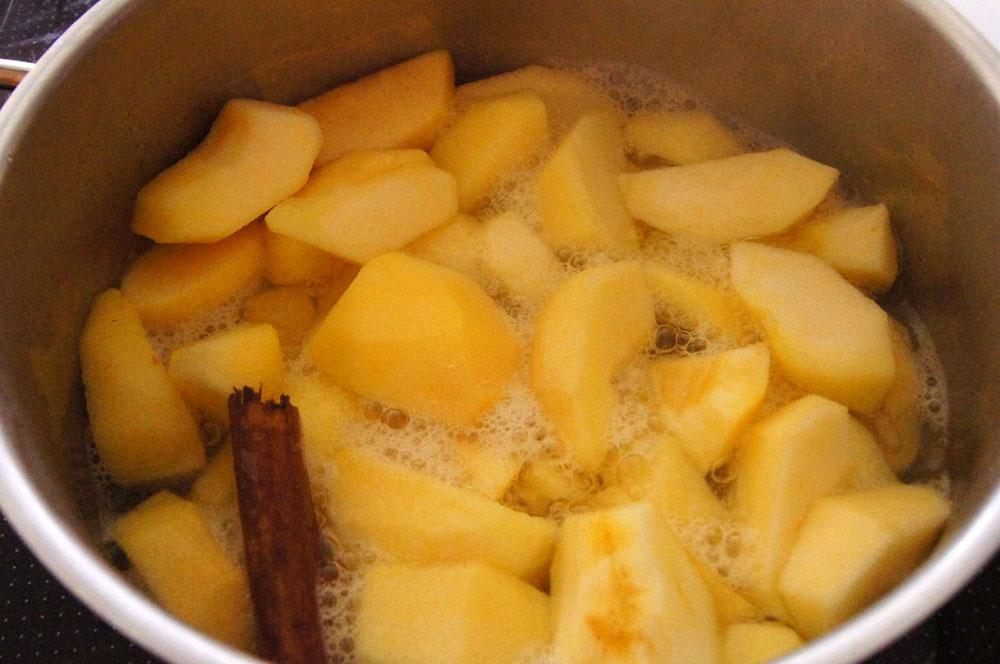 Apfelmus kochen