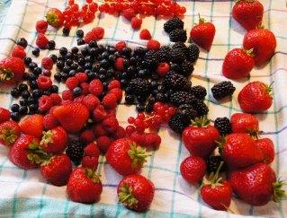 Früchte waschen und abtrocknen