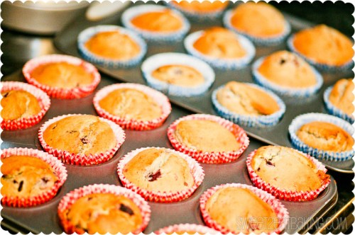 Black Forest Fruits Muffins