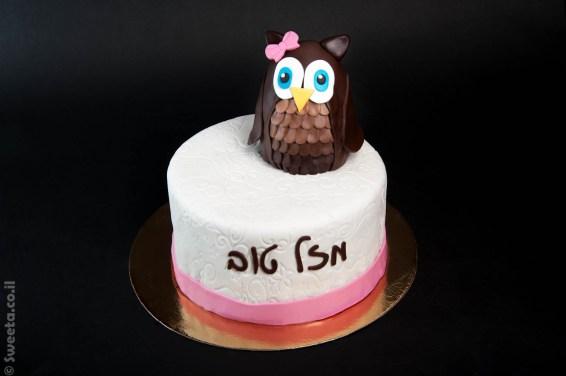 עוגת ינשופה ינשוף מעוצבת בצק סוכר