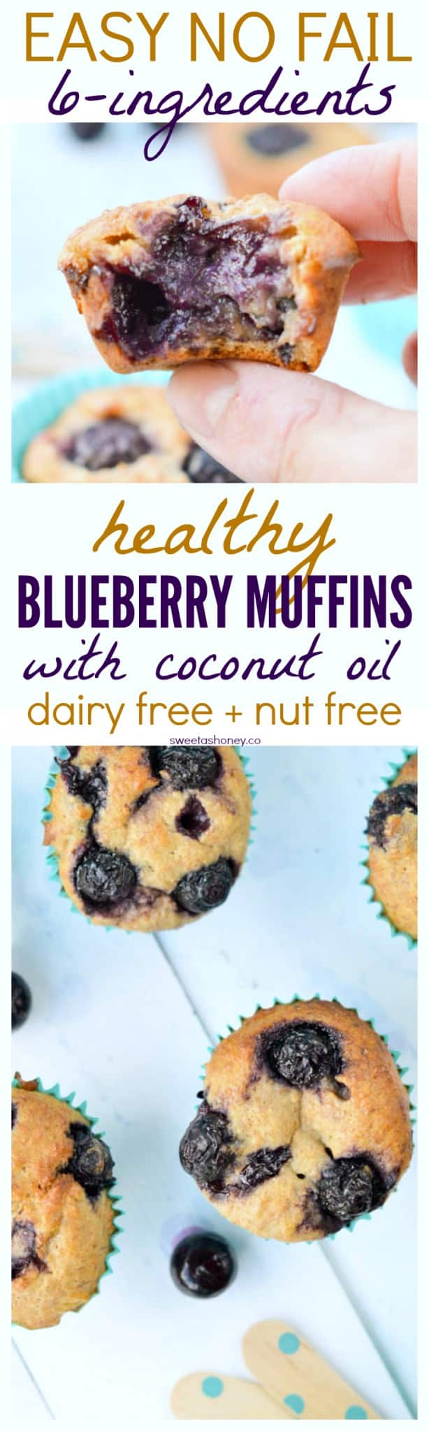 Healthy Whole Wheat Banana Blueberry Muffins