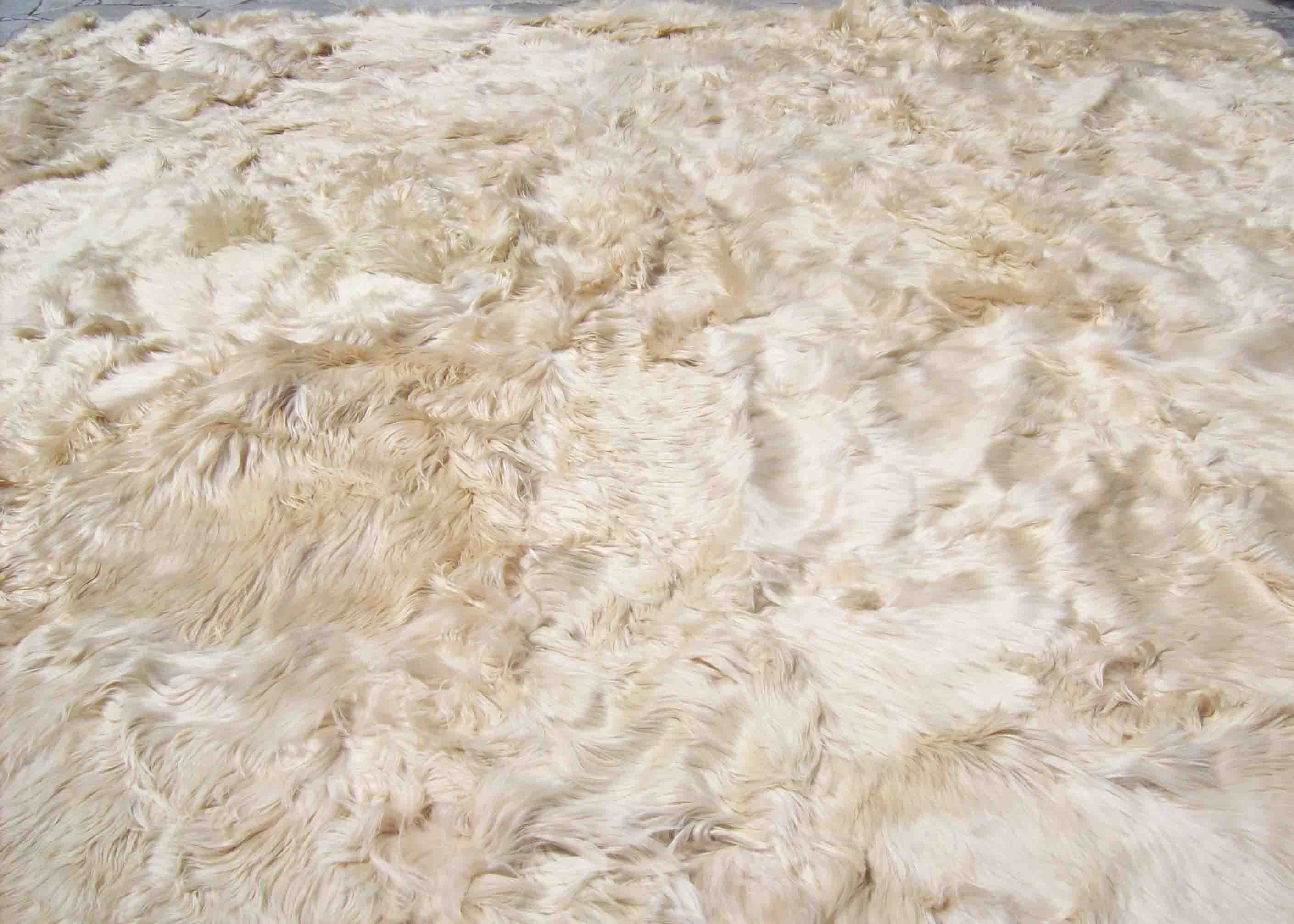 Alpaca Carpet