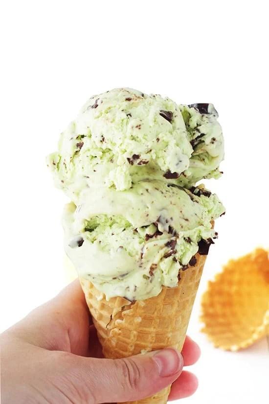 Mint Chocolate Chip Ice Cream