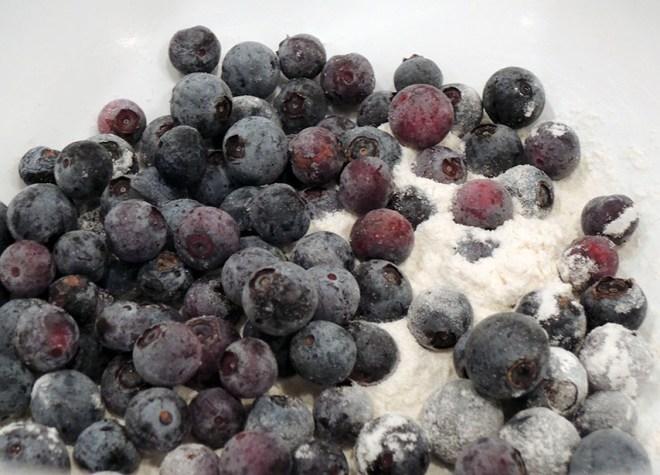Blueberry Boy Bait Blueberries