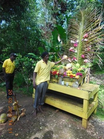 Prospect Plantation - Jamaican Fruits
