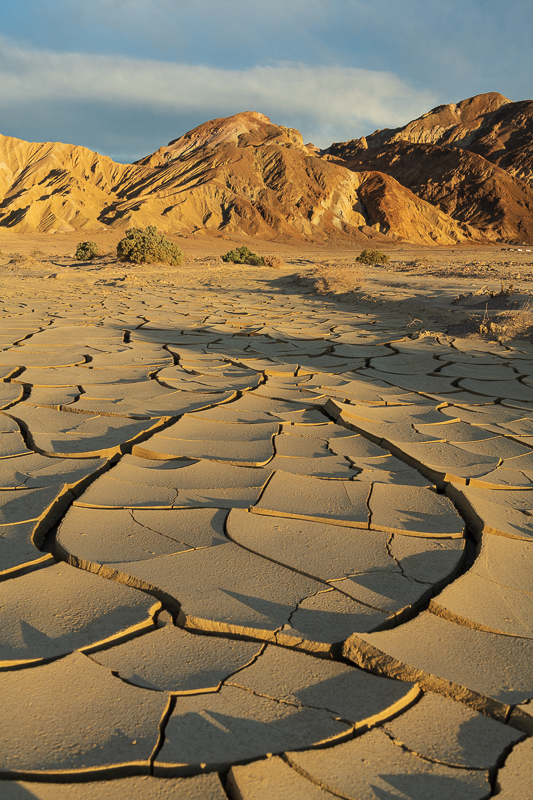Mud flats during the golden hour.