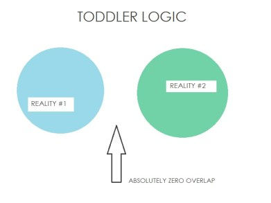 Toddler Logic, by SweetMadeleine.ca