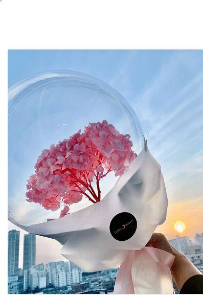 في كوريا: باقات زهور فى بالون