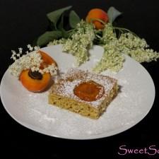 Marillen-Holunder-Kuchen … (vegan)