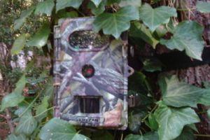 XIKEZAN Wildlife, Trail, & Game Camera Giveaway Ends October 15, 2016
