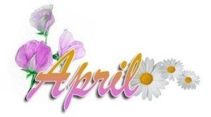 Stash April Flowers Hop Tea Giveaway