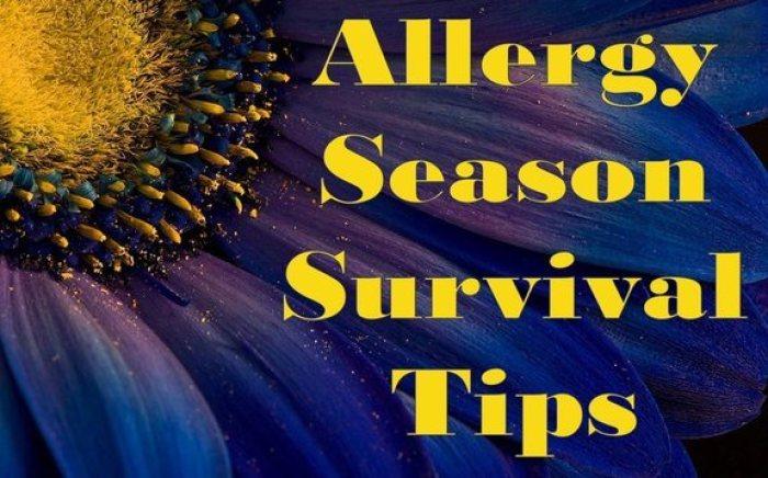 Allergy Season Survival Tips