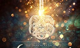 Wizard's Key: Book One of The Darkwolf Saga is a Great Teen Read!