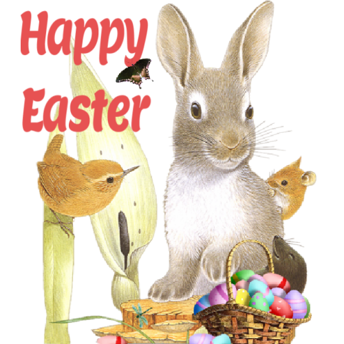 How Did The #Easter Bunny Become Part Of The #Holiday? #EasterBunny #EasterEggs