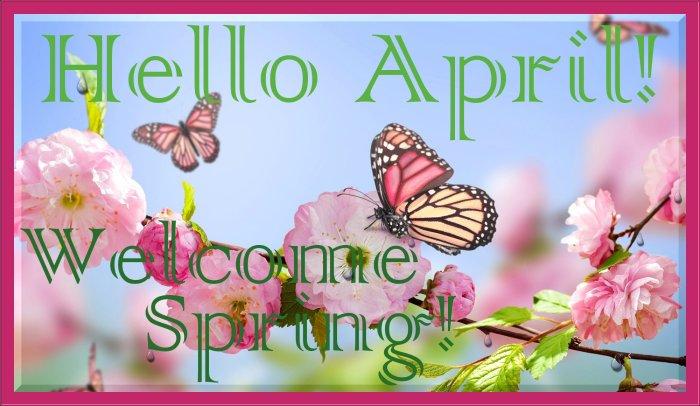 Stash Premium Green - Green Tea Benefits With Single Serve Convenience APRIL RAIN RAIN GO AWAY! Giveaway Hop - Hello April Welcome Spring