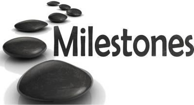 Weight Watcher's FreeStyle Weight Loss Journey Celebrating Milestones - Stones