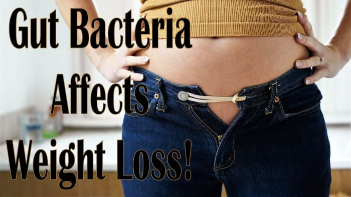 ? Discover How Gut Bacteria Influences Your Weight in this Weight Watchers Freestyle Week 23 Post - Gut Bacteria Affects Weight Loss!