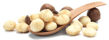Macadamia Nuts Transparent Background