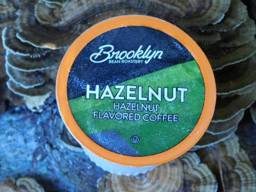 Brooklyn Bean Roastery Hazelnut Coffee Cup On Mushroom Log